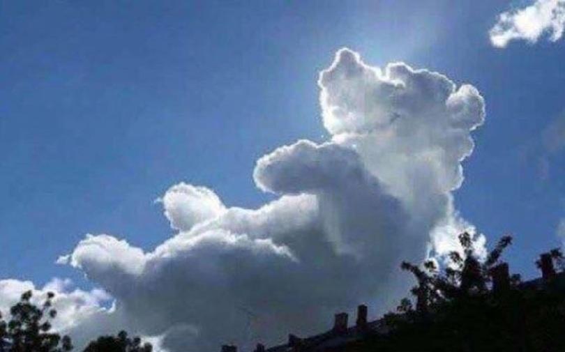 winnie the pooh cloud